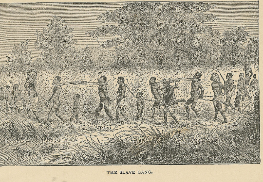 Slave Gang - Stanley's Travels in Africa